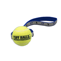 TENNIS BALL TOSS TOY Thumbnail